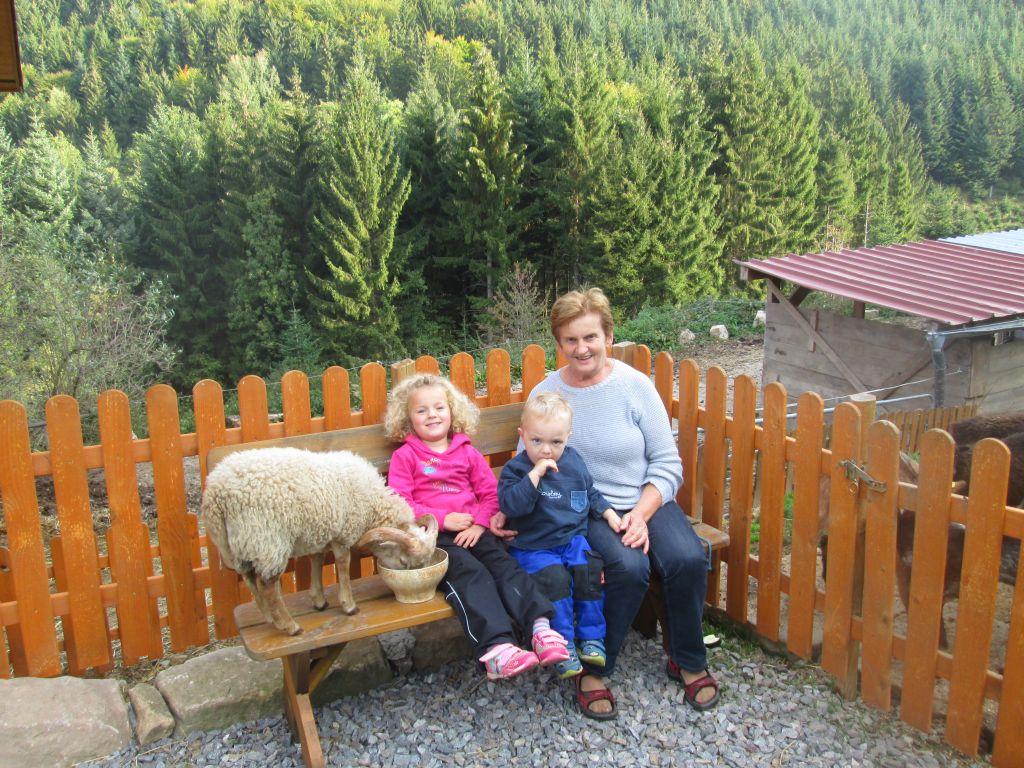 Streicheltiere auf dem Wälderhof Schwarzwald
