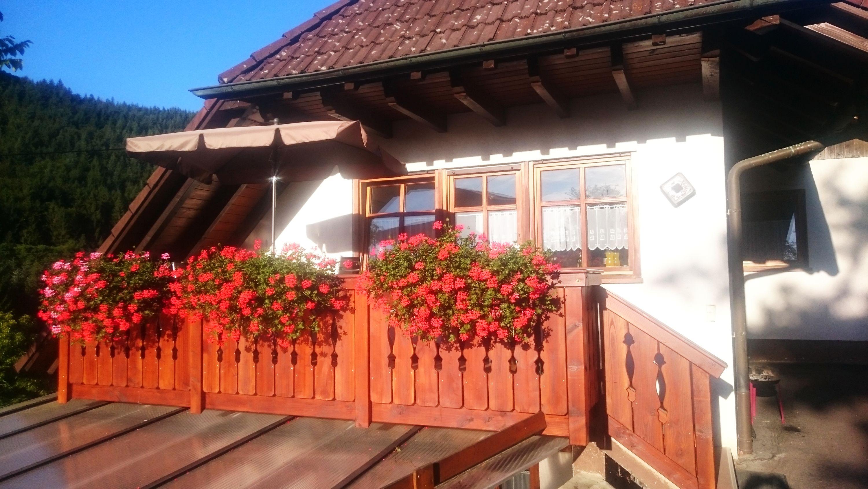 Ferienwohnung Balkonblick Wälderhof Schwarzwald