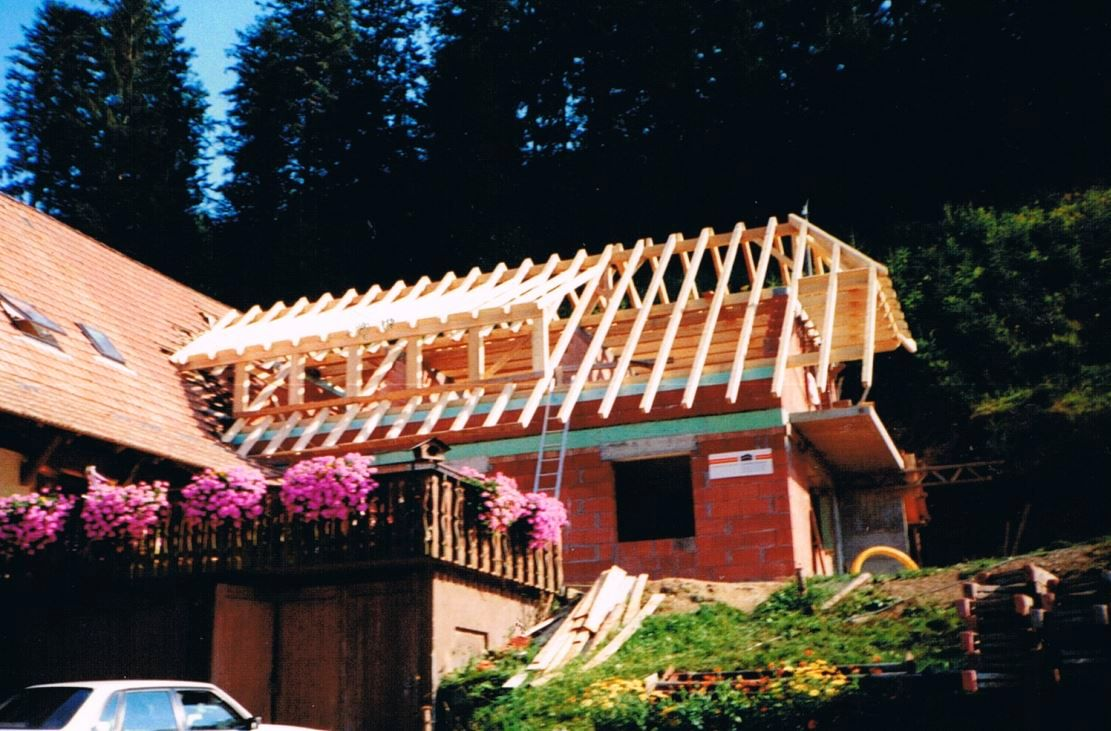 Wälderhof 1990, the Holiday Flats were built