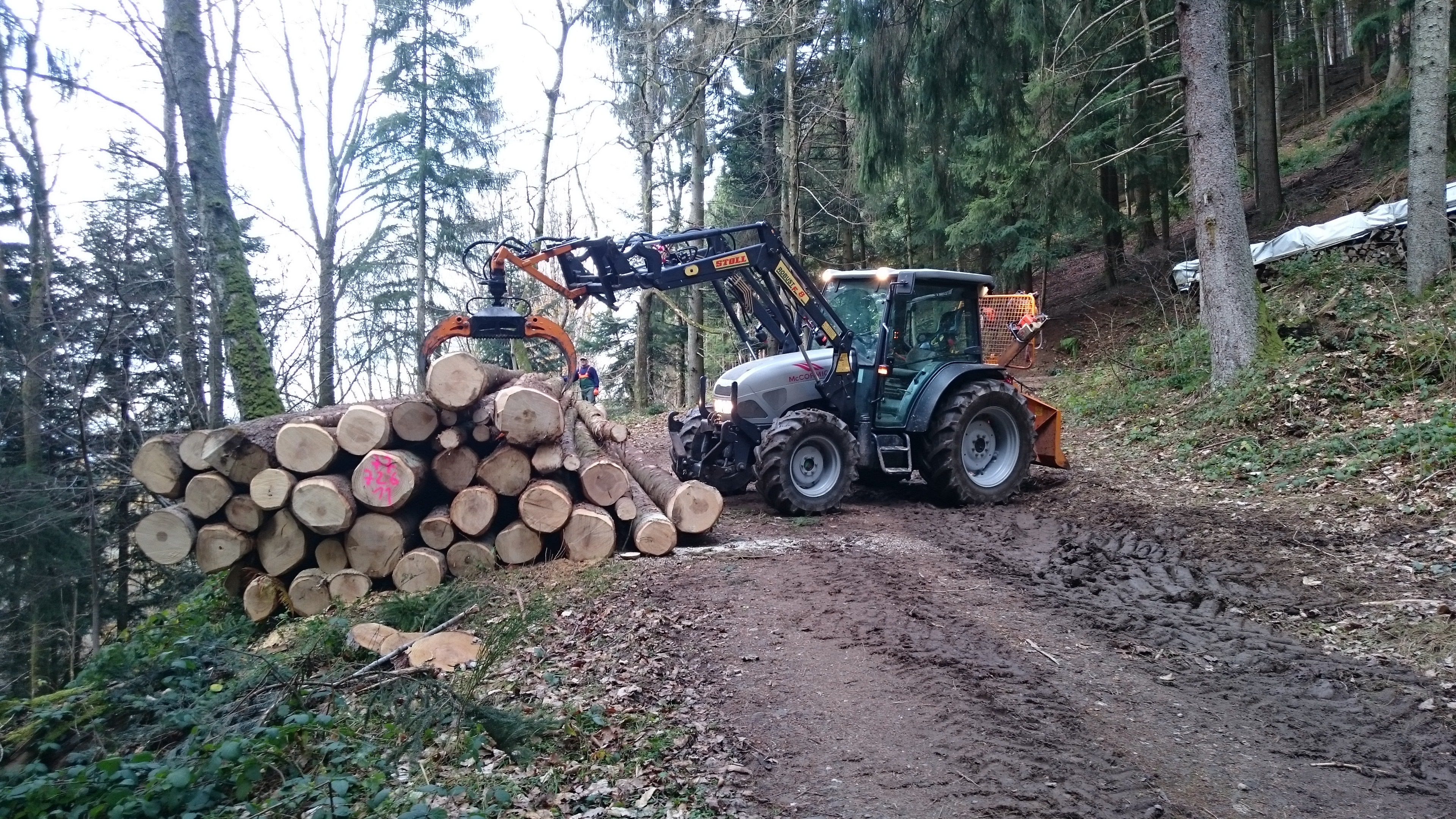 Wälderhof forest management