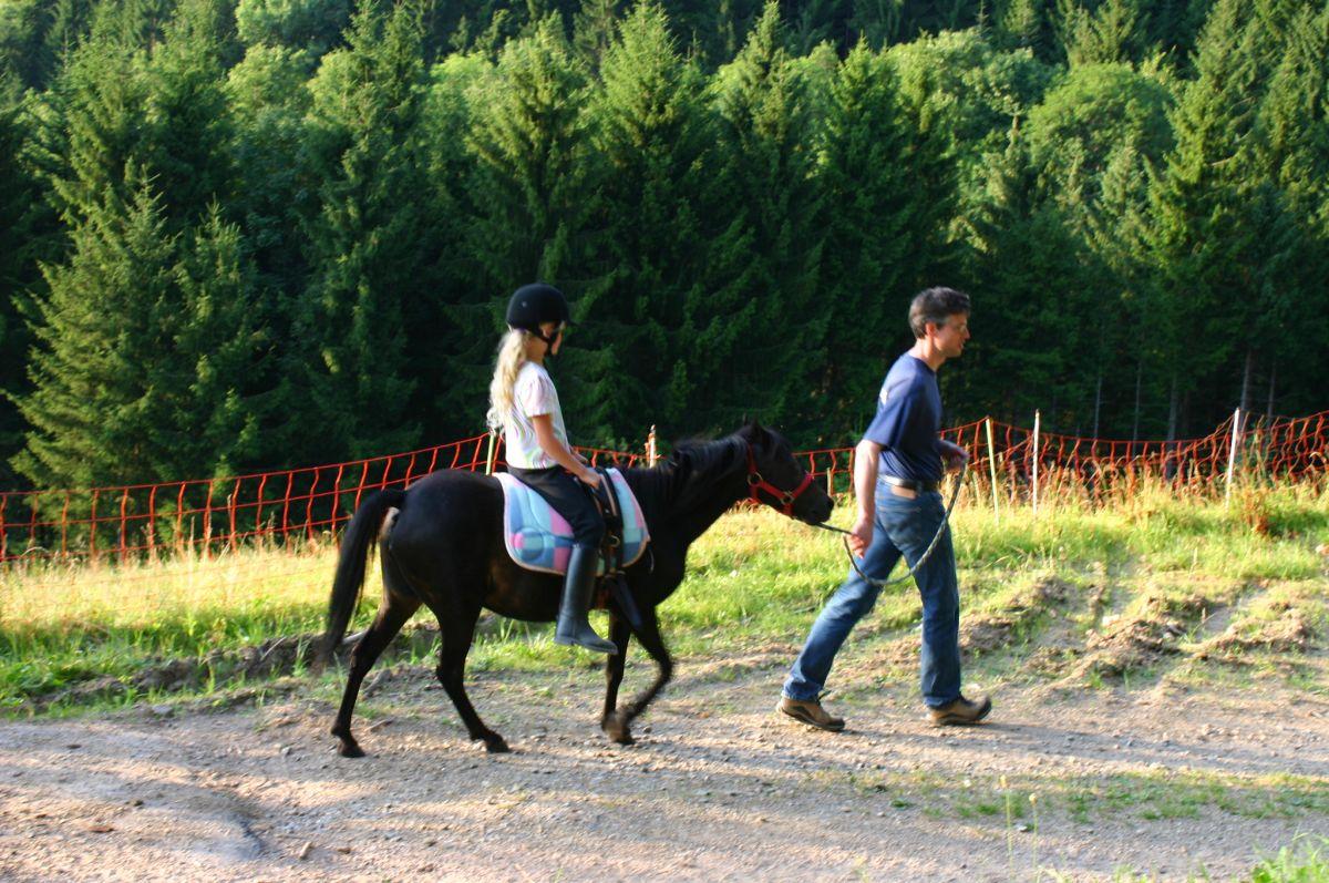 walk a Pony