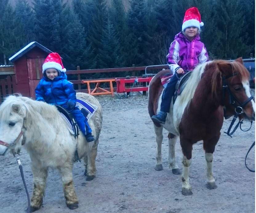 Adventszeit auf dem Waelderhof Pony Maike und Stella